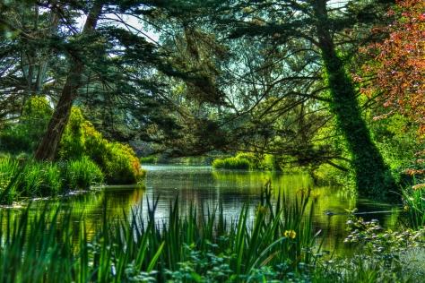 HDR of Golden Gate Park lake, 5/6/10