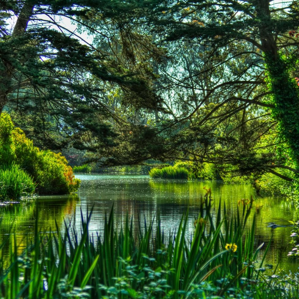 HDR of Golden Gate Park lake, 5/6/10